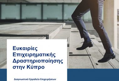 Setting up a Cypriot company – A Diagnostic Tool (publication in Greek)